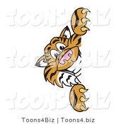 Vector Illustration of a Cartoon Tiger Mascot Looking Around a Sign by Toons4Biz