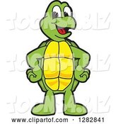 Vector Illustration of a Cartoon Turtle Mascot by Toons4Biz