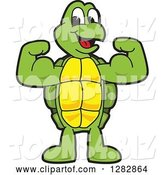 Vector Illustration of a Cartoon Turtle Mascot Flexing His Muscles by Toons4Biz