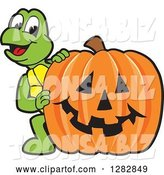 Vector Illustration of a Cartoon Turtle Mascot Looking Around a Halloween Jackolantern Pumpkin by Toons4Biz
