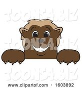 Vector Illustration of a Cartoon Wolverine Mascot over a Sign by Toons4Biz