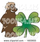 Vector Illustration of a Cartoon Wolverine Mascot with a St Patricks Day Clover by Toons4Biz