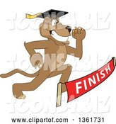Vector Illustration of a Cougar School Mascot Graduate Running to a Finish Line, Symbolizing Determination by Toons4Biz
