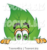 Vector Illustration of a Green Leaf Mascot Scared and Peeking over a Surface by Toons4Biz