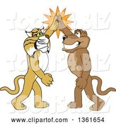 Vector Illustration of Bobcat and Cougar School Mascots High Fiving, Symbolizing Teamwork and Sportsmanship by Toons4Biz