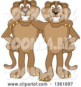 Vector Illustration of Cougar School Mascots Standing and Embracing, Symbolizing Loyalty by Toons4Biz