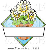 Vector Logo of Happy Cartoon Daisy Flowers in a Pot with Blank Copyspace by Toons4Biz