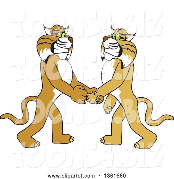 Vector Illustration of a Cartoon Bobcat Mascot Shaking Hands with a Friend, Symbolizing Gratitude