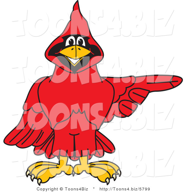 Vector Illustration of a Cartoon Cardinal Mascot Pointing Right