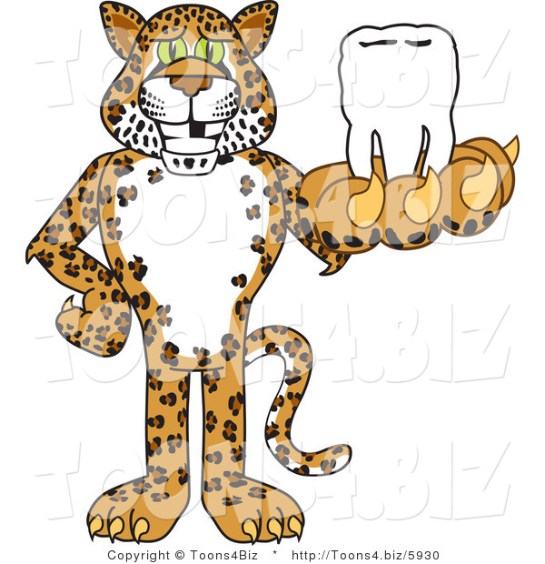 Vector Illustration of a Cartoon Cheetah Mascot Holding a Tooth