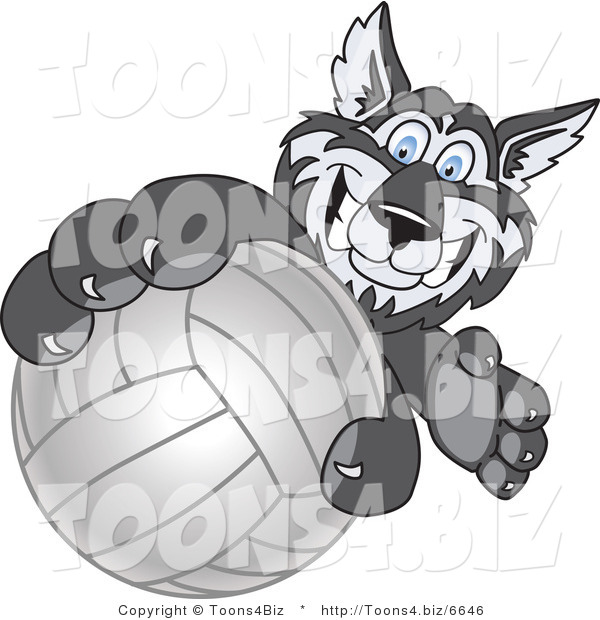 Vector Illustration of a Cartoon Husky Mascot Grabbing a Volleyball