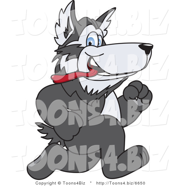 Vector Illustration of a Cartoon Husky Mascot Running