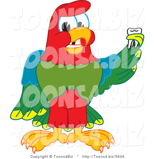 Vector Illustration of a Cartoon Parrot Mascot Holding a Missing Tooth