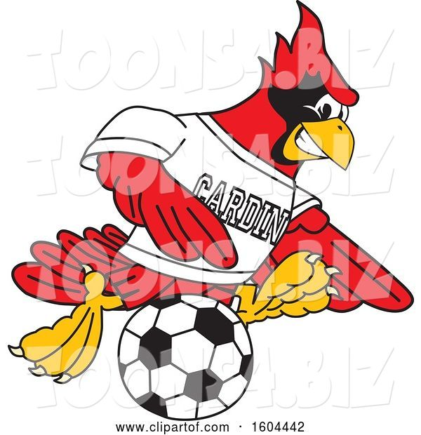 Vector Illustration of a Cartoon Red Cardinal Bird Mascot Playing Soccer