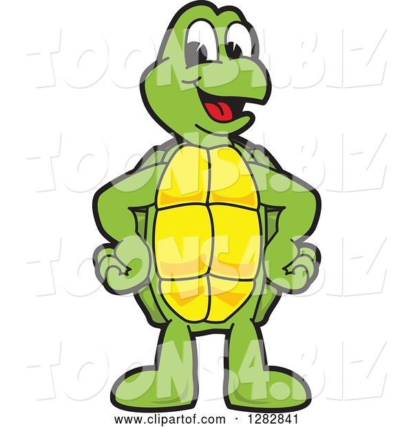 Vector Illustration of a Cartoon Turtle Mascot