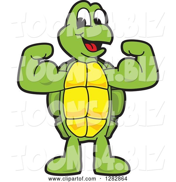 Vector Illustration of a Cartoon Turtle Mascot Flexing His Muscles
