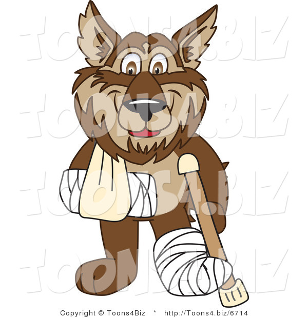 Vector Illustration of a Cartoon Wolf Mascot with a Sling, Cast and Crutch