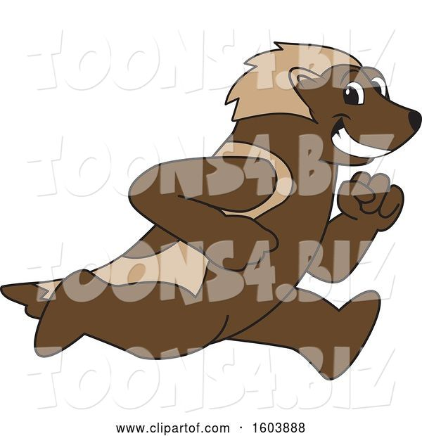 Vector Illustration of a Cartoon Wolverine Mascot Running