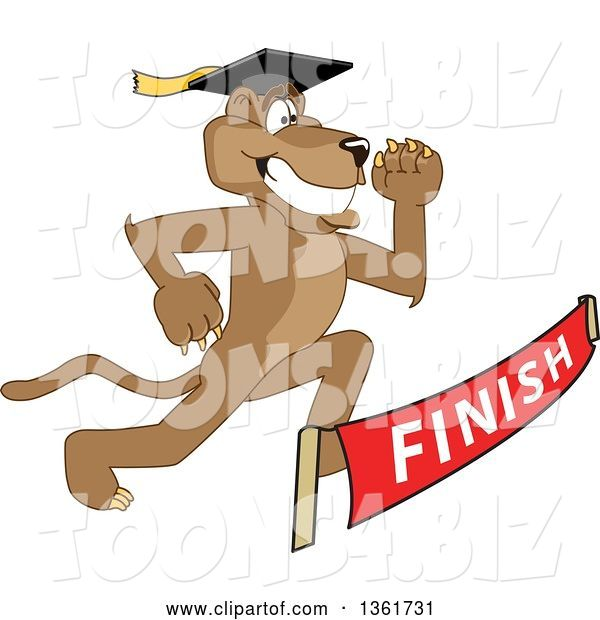 Vector Illustration of a Cougar School Mascot Graduate Running to a Finish Line, Symbolizing Determination