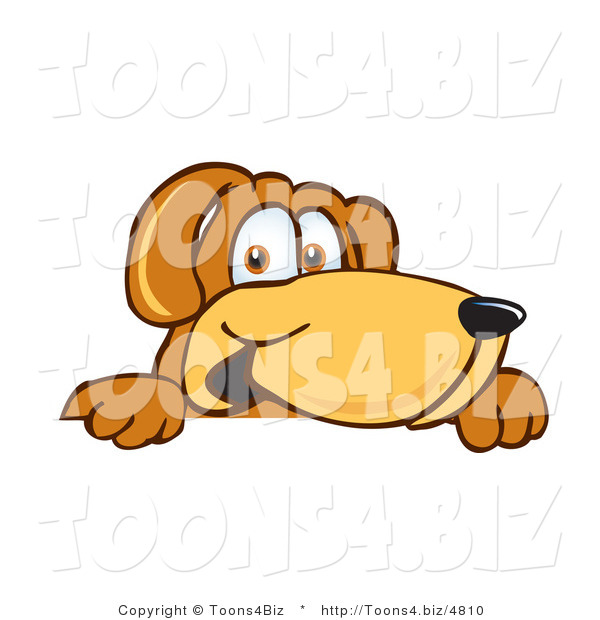 Vector Illustration of a Hound Dog Mascot Peeking over a Surface
