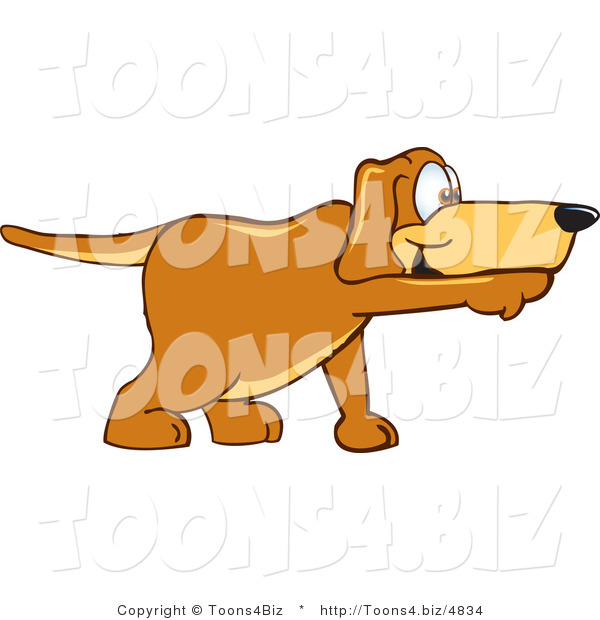 Vector Illustration of a Hound Dog Mascot Pointing While Sniffing Something out