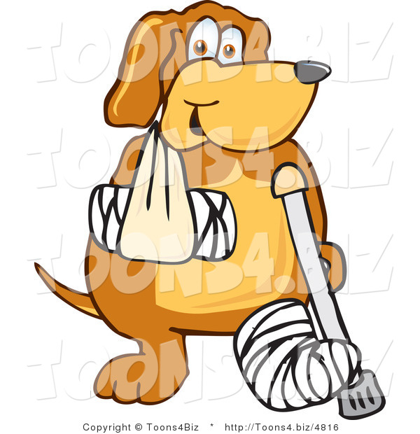 Vector Illustration of a Hound Dog Mascot with an Arm and Leg Bandaged up