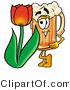 Illustration of a Beer Mug Mascot with a Red Tulip Flower in the Spring by Toons4Biz