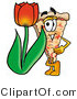 Illustration of a Cartoon Cheese Pizza Mascot with a Red Tulip Flower in the Spring by Toons4Biz