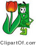 Illustration of a Cartoon Dollar Bill Mascot with a Red Tulip Flower in the Spring by Toons4Biz