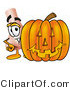 Illustration of a Cartoon Human Nose Mascot with a Carved Halloween Pumpkin by Toons4Biz