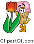 Illustration of a Cartoon Ice Cream Cone Mascot with a Red Tulip Flower in the Spring by Toons4Biz