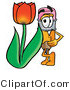 Illustration of a Cartoon Pencil Mascot with a Red Tulip Flower in the Spring by Toons4Biz