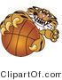 Vector Illustration of a Cartoon Tiger Mascot Grabbing a Basketball by Toons4Biz